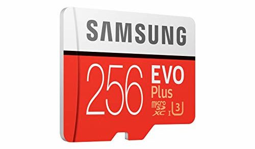 Karta pamięci Samsung Micro SDXC 256 GB Class 10 EVO Plus U3 (w tym adapter SD, do 100 MB / s)