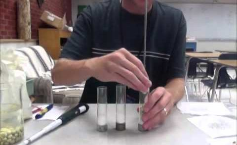Cellular Respiration Lab Walkthrough