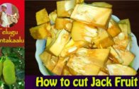 FOODporn.pl HOW TO CUT GREEN JACKFRUIT / KATHAL IN TRADITIONAL WAY AT HOME IN TELUGU WITH TIPS | పనసకాయ కోయుట