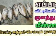 FOODporn.pl How To Clean Fish In tamil|Fish Cleaning Proper Method In Tamil |How to Clean Fish In Home Prepared