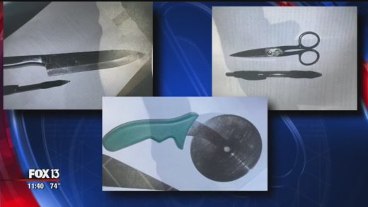 Police: Girls drew up plans to attack school with knives, pizza cutter