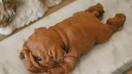 Puppy Cake  Super Cute!  Shared By:                     …