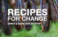 FOODporn.pl Recipes for Change: Sweet and Sour Catfish Soup