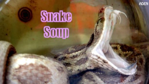 Snake Soup - Hong Kong Food