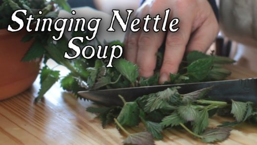 Stinging Nettle Soup - 18th Century Cooking Series with Jas. Townsend and Son S2E6