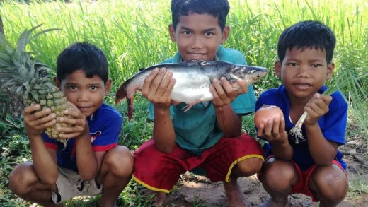 Survival Skills: 3 Young Boys Cooking Big Fish Soup in Village