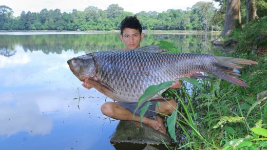 Wow! Cooking Fish with Ginger Recipe for Dinner in Forest
