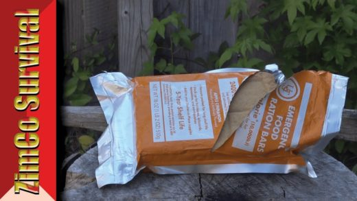 ✔️ Is it any Good? UST Emergency Food Ration Bar- Review