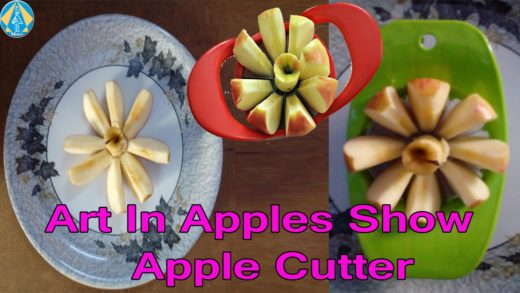 Art In Apples Show IKEA Apple Cutter in Telugu-DARMEDIA