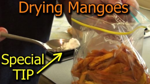 How to Preserve Mangoes by Drying in a Dehydrator - with Special TIP