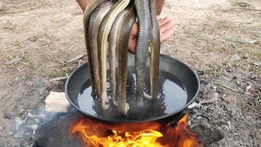 Snake Soup - Cooking Water Snake Soup Recipe - Lim Kitchen