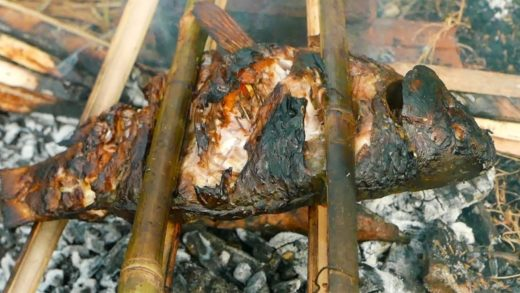Wild Cooking: Grilled Fish Special Style Is Very Delicious | Cooking Outdoors