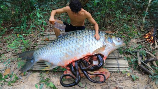 Wow!! Unbelievable Snake In Big Fish Stomach and then Cooking Fish Soup In Forest