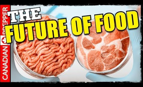 Lab Grown Meat Coming to Market Soon: The Future of Food