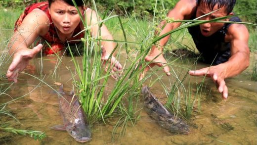 Survival skills: Catch fish by hand in mud puddles - Fish soup recipes