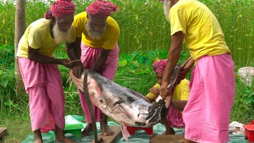 42 KG Devil Catfish Cutting & Cooking by Grandpa for Special People - Dwarf Goonch Fish Curry Recipe