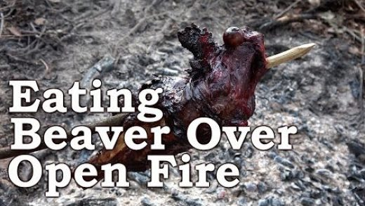Catch n Cook BEAVER!   COOKING BEAVER ON A STICK!!!   Shore Fishing Rainbow Trout