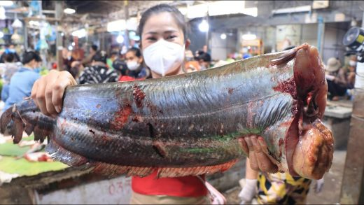 Market show, Big river fish with egg cooking /Braised fish cooking / Countryside Life TV