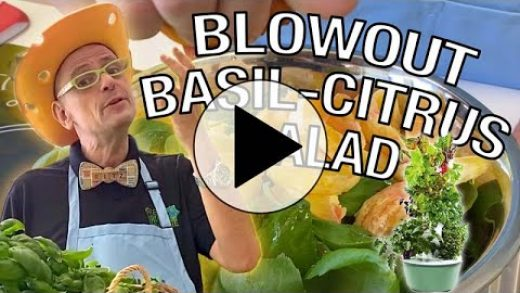 Mister Ritz Makes Blowout Basil Citrus Salad   Tower to Table to Tummy Cooking Show!