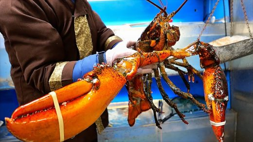 New York City Food - $400 GIANT LOBSTER Seafood Salad Park Asia NYC