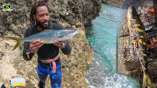One Big Fish For The Grill   Rainbow Runner🐟Catch & Cook🥘On The Beach - Spearfishing Adventures JM