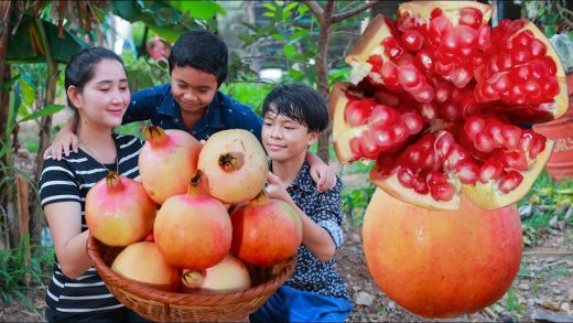 The sweet pomegranate cook in homeland   Fresh pomegranate juice and food prepare for my boys
