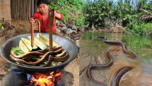 survival in the forest - Catches Eels Cooking for dog Eating delicious EP.02