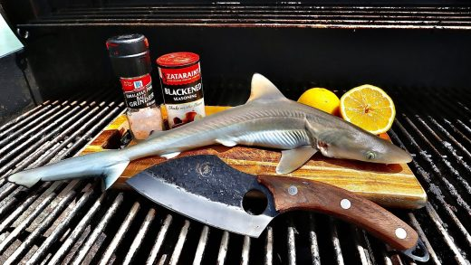 Grilled Baby Shark Catch n' Cook!